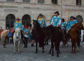 Brevet Fédéral d'Encadrement de Tourisme Equestre - BFE GTE
