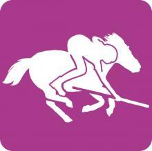 Pony Games